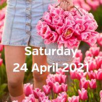 Visit tulip fields 24 april 2021