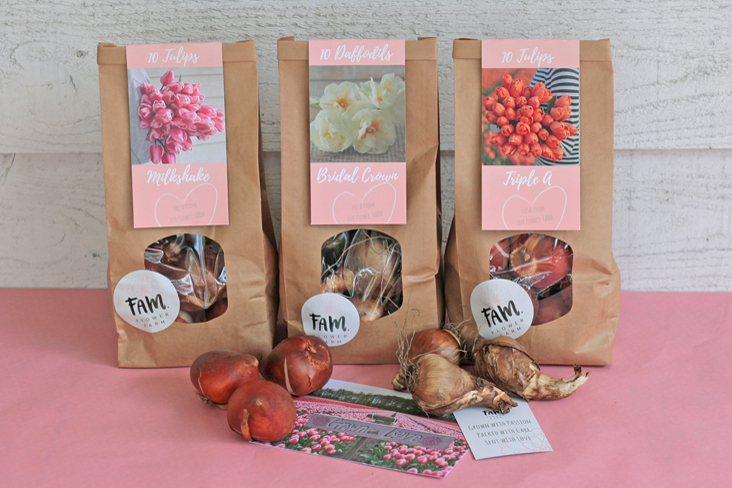 Tulip bulbs flowerbulbs daffodils packaging